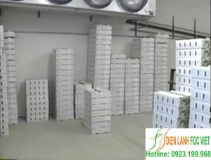 Lắp đặt kho lạnh bảo quản rau quả tối ưu