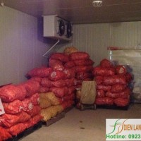 carrot-cold-storae-installation-fruit-and-agricultural-product-cold-storage