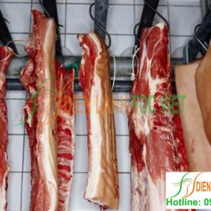 lắp đặt kho lạnh bảo quản thịt lợn