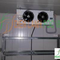 lắp đặt kho lạnh bảo quản dưa lưới