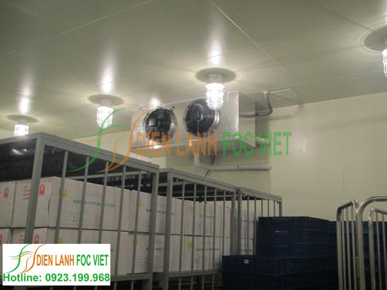 Lắp đặt kho lạnh bảo quản sinh phẩm y tế